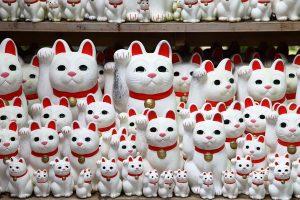 Manikineko - O Gato da Sorte Japonês | Kuri Kuri